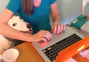 Reading my blog.